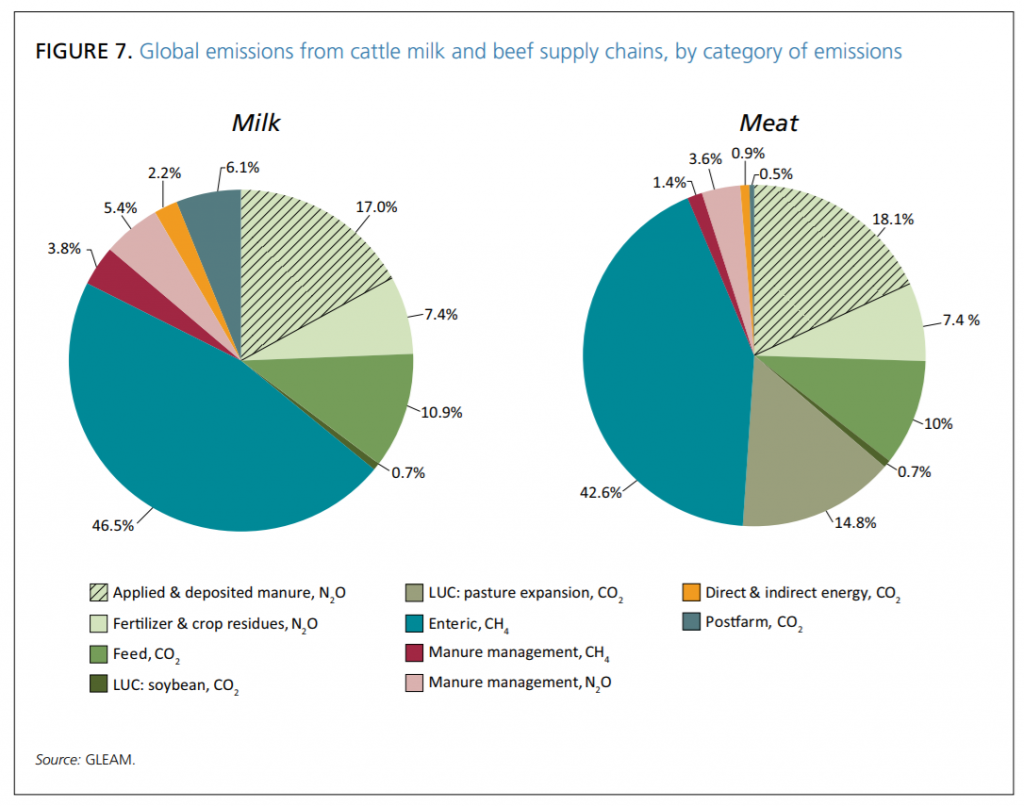 Seaweed diet for burping cows? - GHG and Carbon Accounting