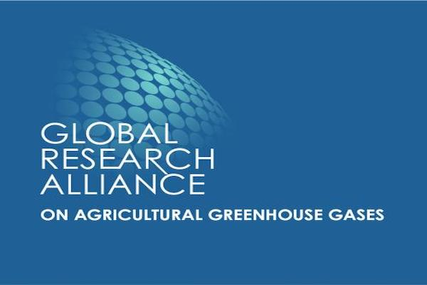 CALL FOR APPLICATIONS CLIFF-GRADS SCHOLARSHIP - GHG and